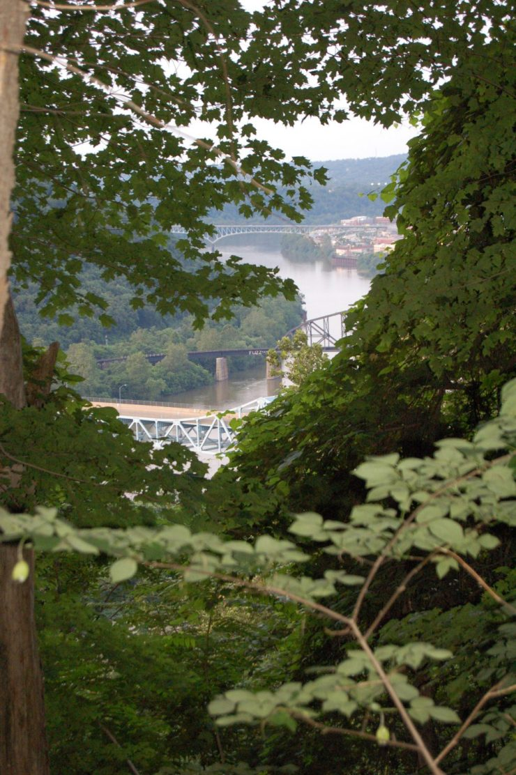 View from Hays Woods, 2005